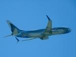 worldstar777さんが、ロサンゼルス国際空港で撮影したアラスカ航空 737-890の航空フォト(写真)