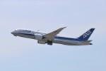 ヒロジーさんが、広島空港で撮影した全日空 787-8 Dreamlinerの航空フォト(写真)