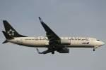 imosaさんが、羽田空港で撮影した全日空 737-881の航空フォト(写真)
