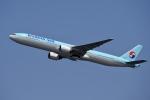 飛行機ゆうちゃんさんが、羽田空港で撮影した大韓航空 777-3B5の航空フォト(写真)