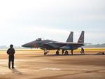 MASACHANさんが、新田原基地で撮影した航空自衛隊 F-15J Eagleの航空フォト(写真)