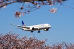 yabyanさんが、成田国際空港で撮影したユナイテッド航空 787-9の航空フォト(写真)