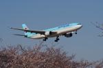 yabyanさんが、成田国際空港で撮影した大韓航空 A330-323Xの航空フォト(飛行機 写真・画像)