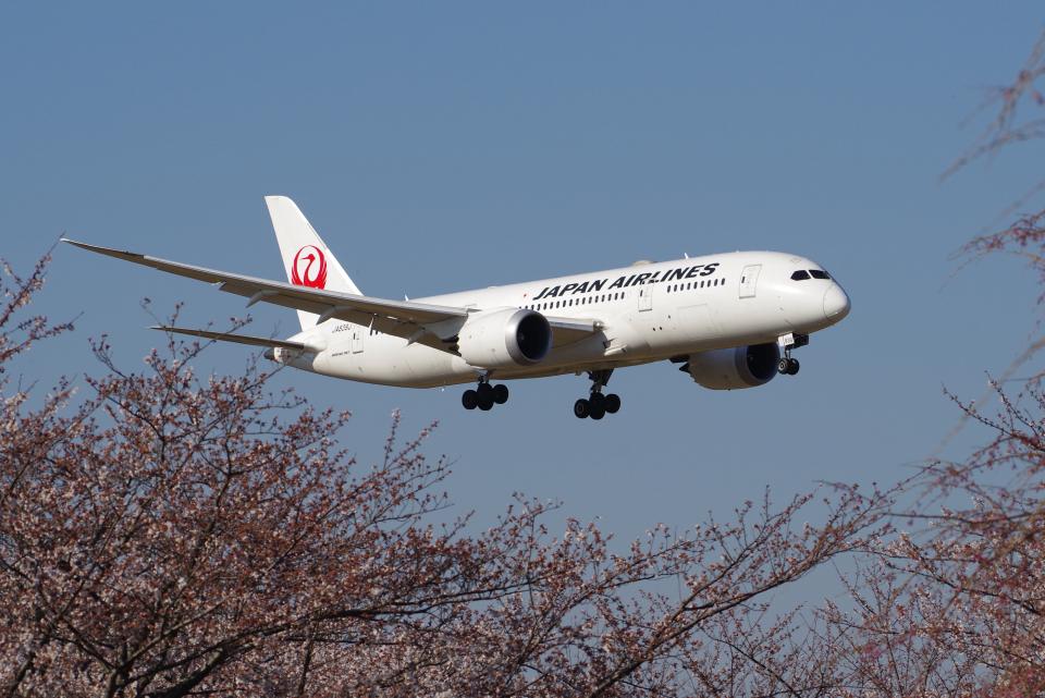 yabyanさんの日本航空 Boeing 787-8 Dreamliner (JA839J) 航空フォト