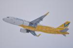 LEGACY-747さんが、新千歳空港で撮影したバニラエア A320-214の航空フォト(写真)