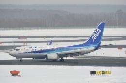 LEGACY-747さんが、新千歳空港で撮影した全日空 737-781の航空フォト(写真)
