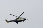 どんちんさんが、名古屋飛行場で撮影した中日本航空 AS332L Super Pumaの航空フォト(写真)