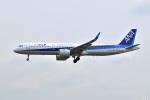 @たかひろさんが、伊丹空港で撮影した全日空 A321-272Nの航空フォト(写真)