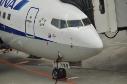 全日空 Boeing 737-800 (JA77AN)  航空フォト   by double_licenseさん  撮影2016年05月01日%s
