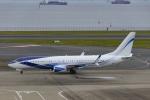 Mochi7D2さんが、羽田空港で撮影したEIEイーグル 737-8EQ BBJ2の航空フォト(飛行機 写真・画像)