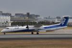 美月推しさんが、伊丹空港で撮影したANAウイングス DHC-8-402Q Dash 8の航空フォト(写真)