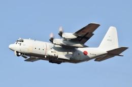 MiYABiさんが、徳島空港で撮影した海上自衛隊 C-130Rの航空フォト(飛行機 写真・画像)