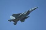 kumagorouさんが、那覇空港で撮影した航空自衛隊 F-15DJ Eagleの航空フォト(飛行機 写真・画像)