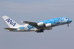 やまけんさんが、成田国際空港で撮影した全日空 A380-841の航空フォト(飛行機 写真・画像)