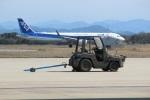 7915さんが、米子空港で撮影した全日空 A320-211の航空フォト(写真)