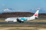 Cygnus00さんが、新千歳空港で撮影した日本航空 737-846の航空フォト(写真)