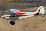 いおりさんが、羽生滑空場で撮影した羽生ソアリングクラブ A-1 Huskyの航空フォト(写真)