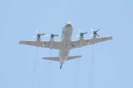 myoumyoさんが、北熊本駐屯地で撮影した海上自衛隊 P-3Cの航空フォト(飛行機 写真・画像)