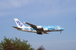 cocoa11さんが、成田国際空港で撮影した全日空 A380-841の航空フォト(写真)