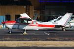 いおりさんが、調布飛行場で撮影した川崎航空 TU206G Turbo Stationair 6の航空フォト(写真)