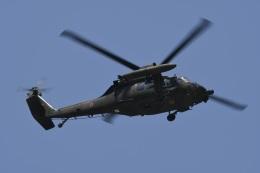 たっしーさんが、北熊本駐屯地で撮影した陸上自衛隊 UH-60JAの航空フォト(飛行機 写真・画像)