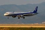 KAIHOさんが、徳島空港で撮影した全日空 A321-272Nの航空フォト(写真)