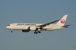 神宮寺ももさんが、成田国際空港で撮影した日本航空 787-8 Dreamlinerの航空フォト(写真)