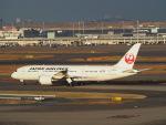鷹71さんが、羽田空港で撮影した日本航空 787-8 Dreamlinerの航空フォト(写真)