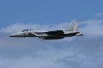 元青森人さんが、三沢飛行場で撮影した航空自衛隊 F-15J Eagleの航空フォト(写真)