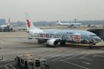 ちゅういちさんが、北京首都国際空港で撮影した中国国際航空 737-86Nの航空フォト(写真)