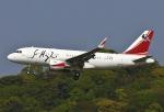 あしゅーさんが、福岡空港で撮影した中国企業所有 A319-115CJの航空フォト(写真)