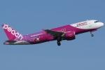 Wings Flapさんが、関西国際空港で撮影したピーチ A320-214の航空フォト(写真)