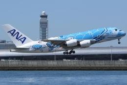 Wings Flapさんが、関西国際空港で撮影した全日空 A380-841の航空フォト(写真)