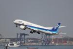 kenzy201さんが、羽田空港で撮影した全日空 787-9の航空フォト(写真)