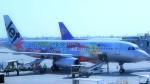 westtowerさんが、プノンペン国際空港で撮影したジェットスター・アジア A320-232の航空フォト(写真)