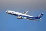 kaz787さんが、伊丹空港で撮影した全日空 777-281/ERの航空フォト(写真)