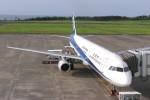 nh002nrtiadさんが、鳥取空港で撮影した全日空 A321-131の航空フォト(写真)