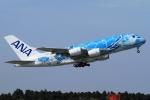 ウッディーさんが、成田国際空港で撮影した全日空 A380-841の航空フォト(写真)