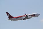 ANA744Foreverさんが、成田国際空港で撮影したティーウェイ航空 737-83Nの航空フォト(写真)