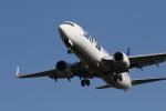 ひめままさんが、鹿児島空港で撮影したスカイマーク 737-8HXの航空フォト(写真)