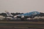 さもんほうさくさんが、成田国際空港で撮影した全日空 A380-841の航空フォト(写真)