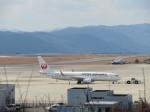 山彦望さんが、広島空港で撮影した日本航空 737-846の航空フォト(写真)