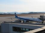 山彦望さんが、広島空港で撮影した全日空 A321-211の航空フォト(写真)