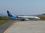 山彦望さんが、岩国空港で撮影した全日空 737-881の航空フォト(写真)
