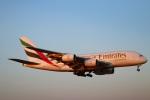 zero1さんが、成田国際空港で撮影したエミレーツ航空 A380-861の航空フォト(写真)