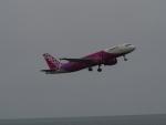 bannigsさんが、新潟空港で撮影したピーチ A320-214の航空フォト(写真)