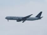 Tき/九州急行さんが、羽田空港で撮影した全日空 767-381/ERの航空フォト(写真)