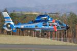 Nao0407さんが、松本空港で撮影した長野県警察 AS365N3 Dauphin 2の航空フォト(写真)