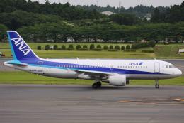 kinsanさんが、成田国際空港で撮影した全日空 A320-214の航空フォト(飛行機 写真・画像)