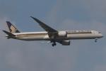 木人さんが、成田国際空港で撮影したシンガポール航空 787-10の航空フォト(写真)